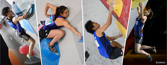 About Sports Climbing